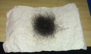 Lost Hair